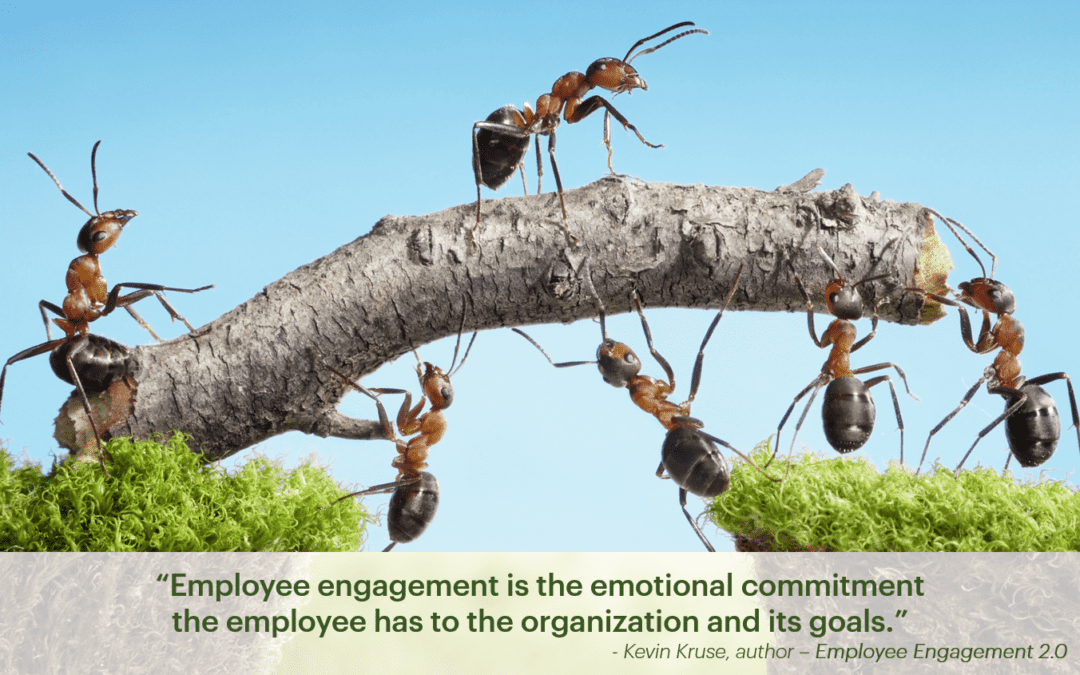 Engaging your Employees in Seven Simple Questions
