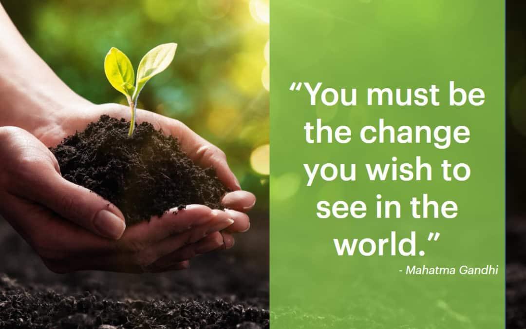 Sustaining the Change